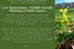 Session 1 : Low Maintenance Wildlife Friendly Planting