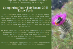 Session 6 : Completing Your Tidy Towns 2021 Entry Form