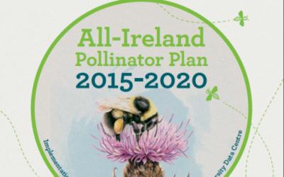 Local Communities : Actions to Help Pollinators
