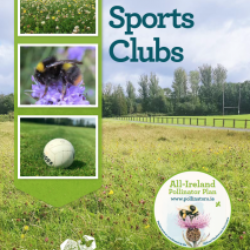 New Guidelines to make Sport Clubs more Biodiversity Friendly